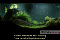 Contoh Procedure Text Panjang - How to make Huge Aquascape