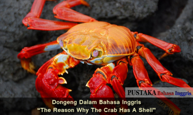Dongeng Dalam Bahasa Inggris - The Reason Why The Crab Has A Shell
